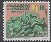 1959 French Antarctic 10f  'Pringlea'  SG.22 u/m (MNH)